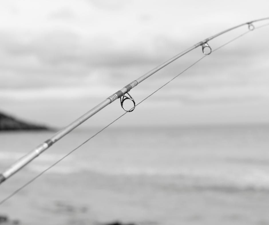 haulover inlet fishing