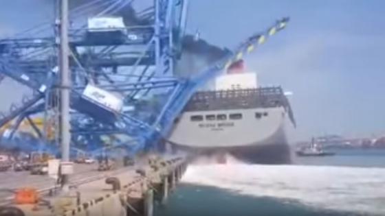 milano bridge ship